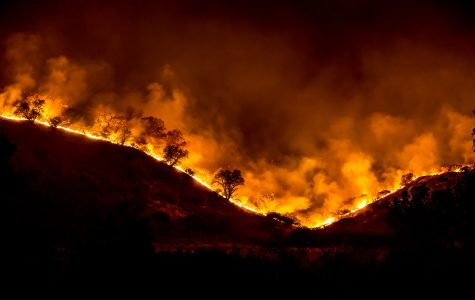 The Woolsey Fire.