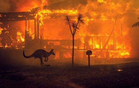 Australia Heats Up