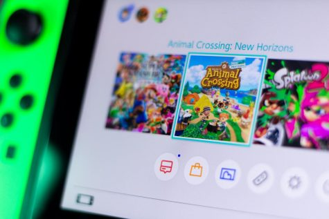 Nintendo Switch home screen displaying Animal Crossing: New Horizons with two other games.