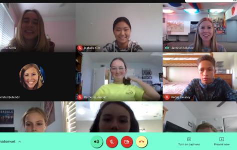 McAuliffe's Birdwatch staff meeting via Google Meet.