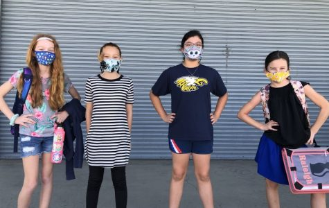 Cohort A mask competition winners.