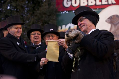 People admiring and celebrating Groundhog day.