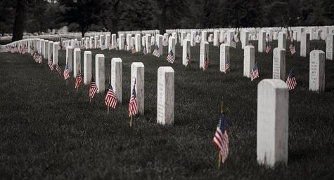 This is an image of the burial grounds of the US military.